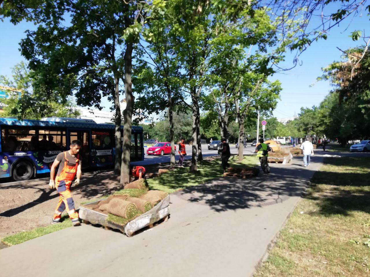 На улице Пришвина и Алтуфьевке завершаются работы по укладке рулонных газонов