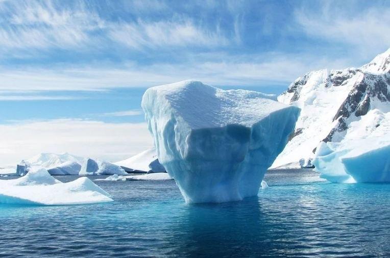 Программу в честь открытия Антарктиды проведут 31 января в библиотеке на Корнейчука