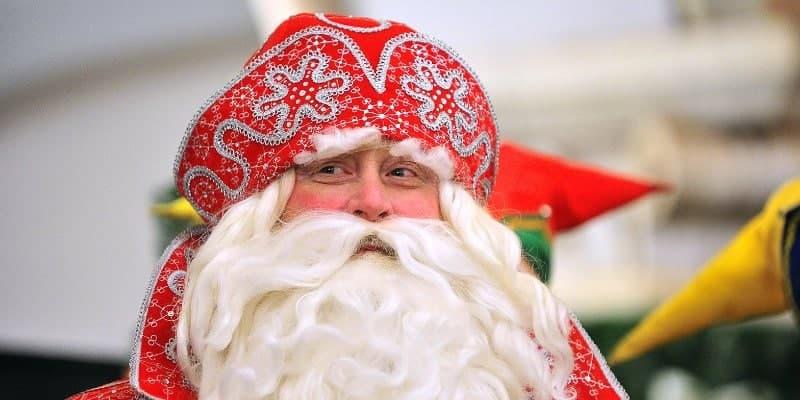 Лианозовский парк предложил детям пообщаться с Дедом Морозом в Zoom